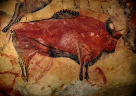 Cave Painting of a Bison in the Cave of Altamira, Spain. Prehistoric Art Print.  (00619)